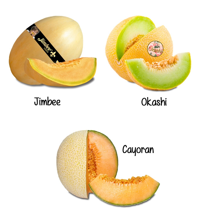 5 assorted melons in deluxe box